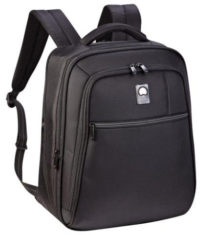 Delsey Laptop Backpack in Bangalore